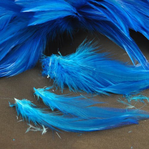 78024030-13 Feathers -  Coque Hackles - Turquoise Blue (Pack)