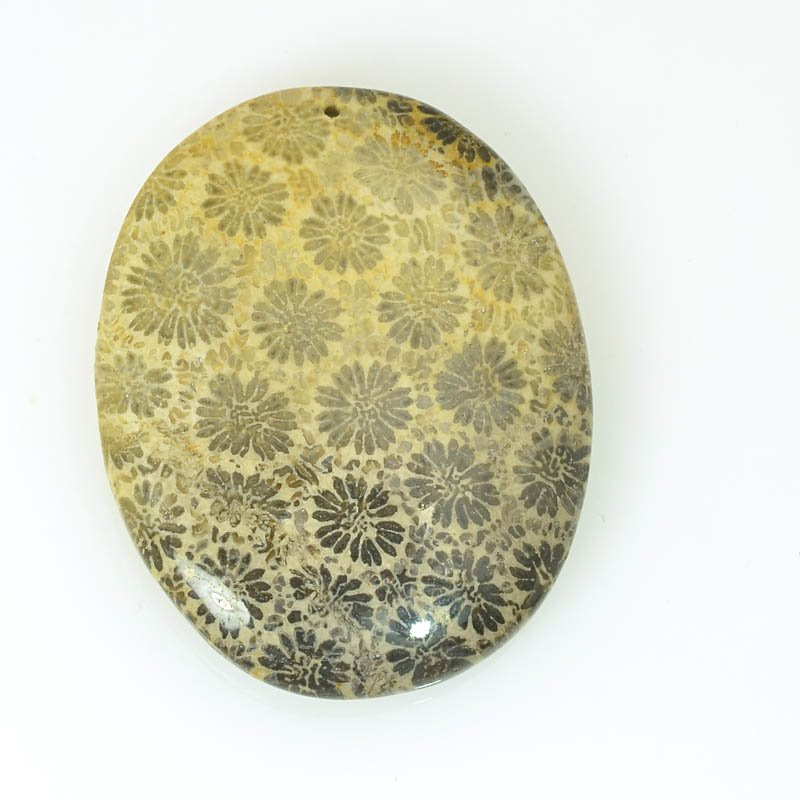 s61141 Stone Pendant - OOAK - 33x41mm Oval - Fossil Coral
