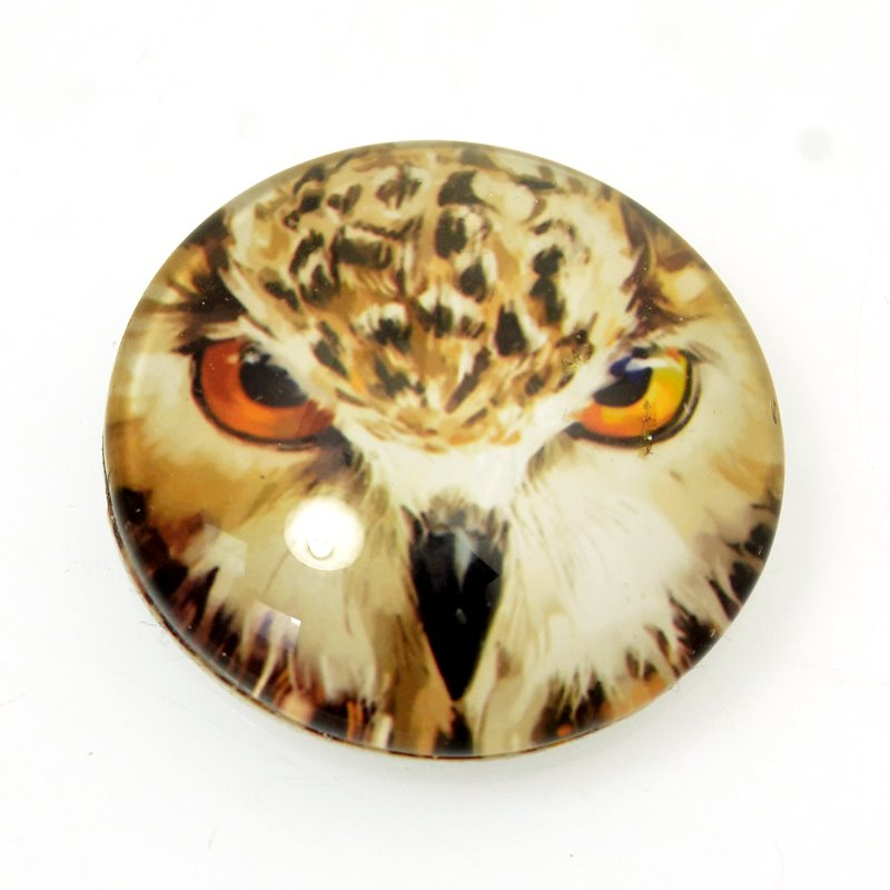 s62981 Glass Cabochon - 30mm Glass Cabochon with Image - Owl