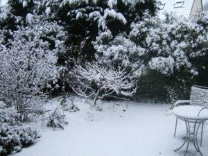 snow-18-dec-2010