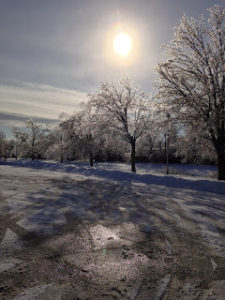 ice-storm-1a-122213-desaulniers-anne-marie