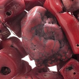 Stone Beads - Assorted Earths Jewels - Red Bamboo Coral Dyed (Pack)