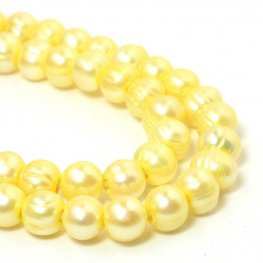 Freshwater Pearls - 8x9mm Potato Pearl - Big Hole - Pale Yellow (strand)