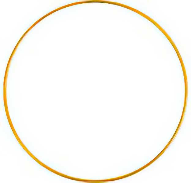 83021584 Ring - 2.5in Round - Brass (10)
