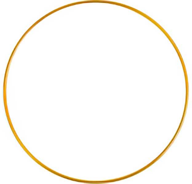 83021594 Ring - 12in Round - Brass (5)