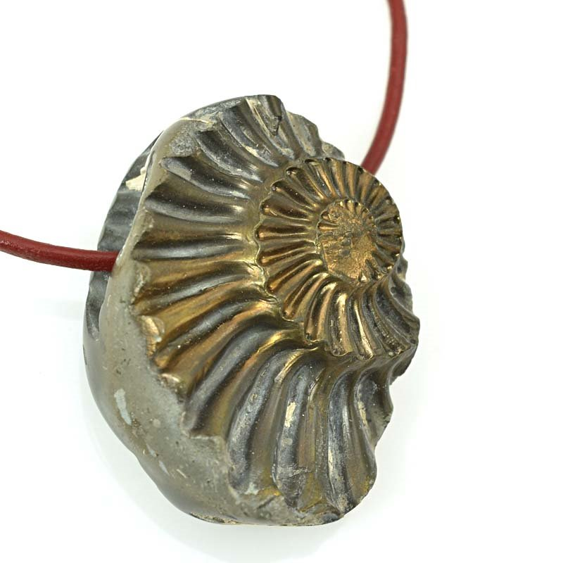 s63366 OOAK Stone Pendant - 38mm Freeform - Pyritized Ammonite Negative