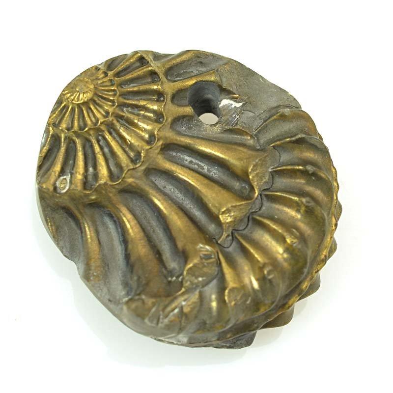 s63368 OOAK Stone Pendant - 33mm Freeform - Pyritized Ammonite Negative