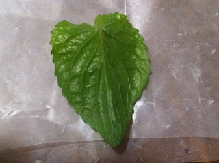 The Joy of Metal Clay – Silver Leaves